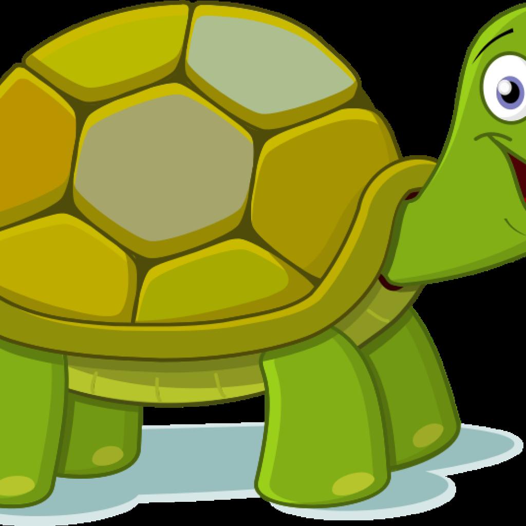 Free pizza hatenylo com. Clipart turtle friend