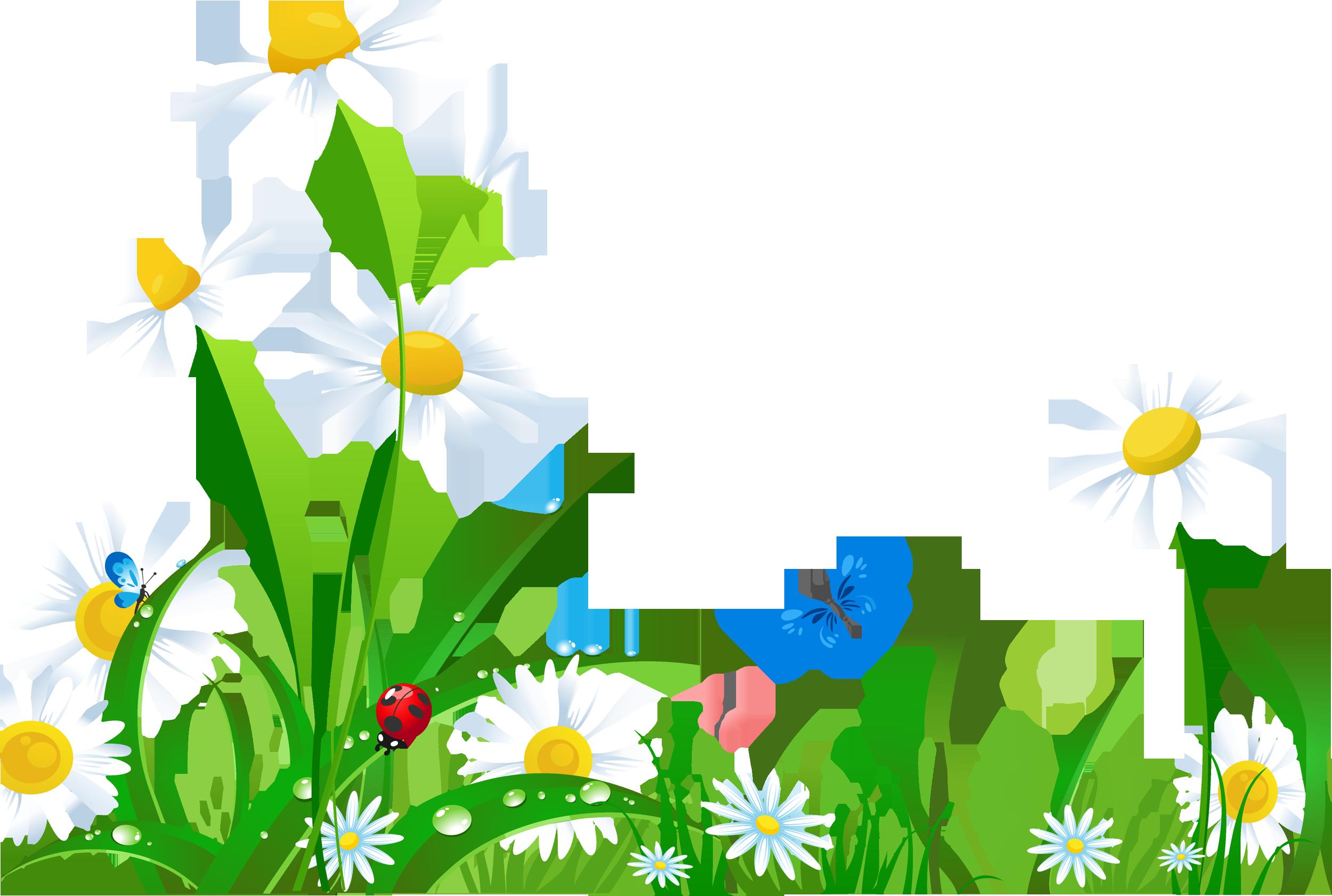 Daisy clipart grass prairie, Daisy grass prairie ... (2500 x 1682 Pixel)