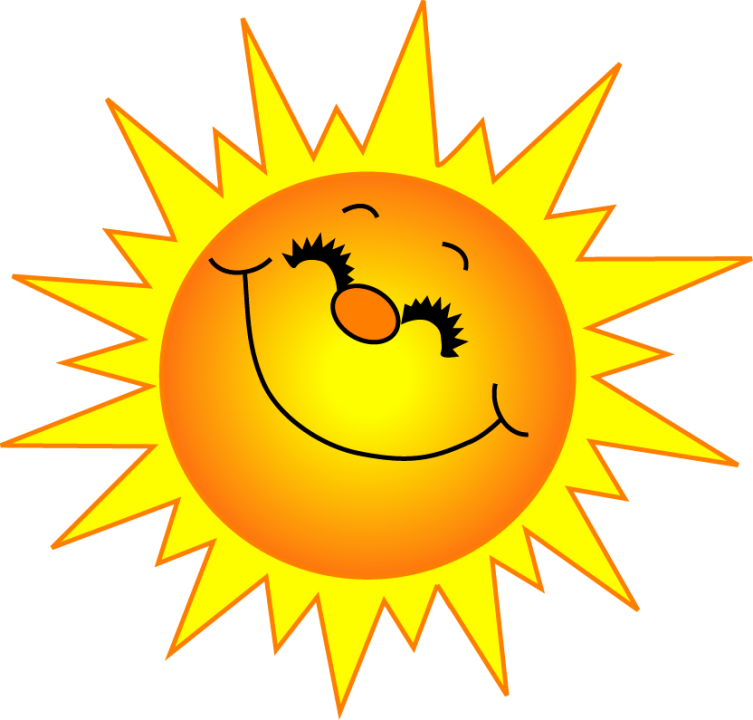 Fly clipart turd. Sunshine sun black and