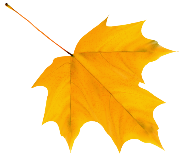 Clipart sun autumn. Gallery free pictures