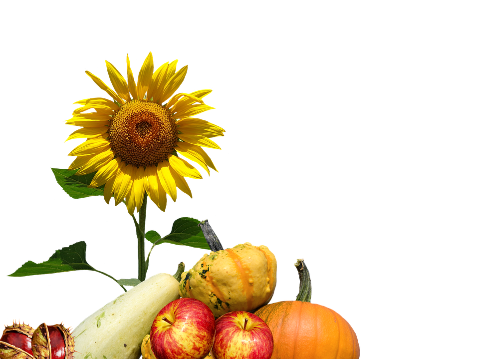 Clipart sun autumn. Png transparent images pluspng
