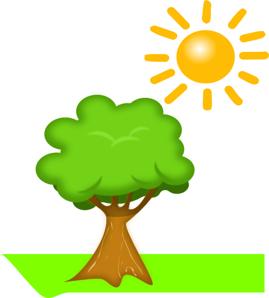 Plant and sun clip. Tree clipart math