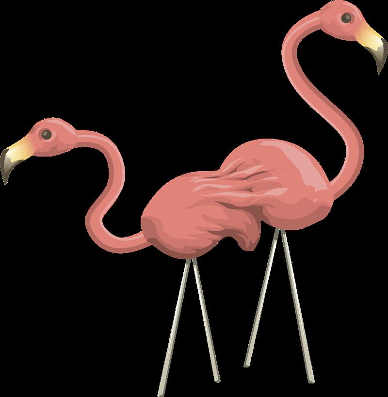 Foot clipart flamingo. Cute clip art billigakontaktlinser