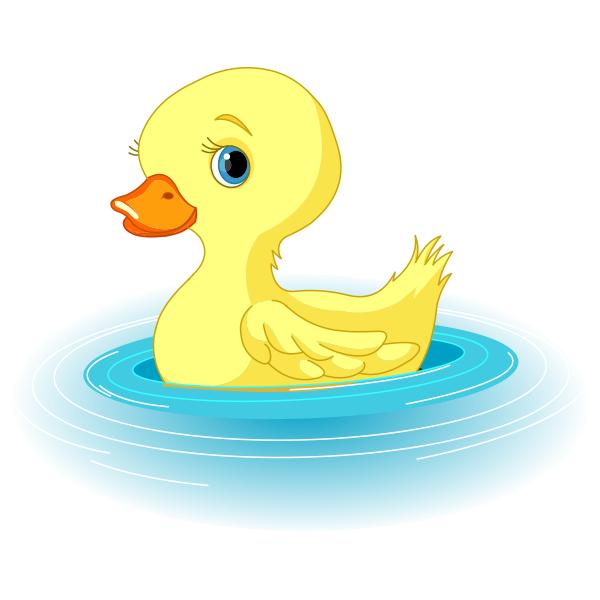 Duck animal icons cute. Ducks clipart swimming