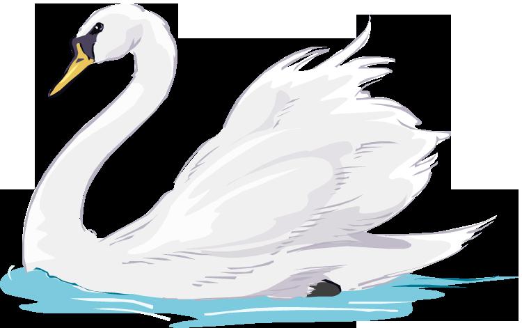 Wing swan