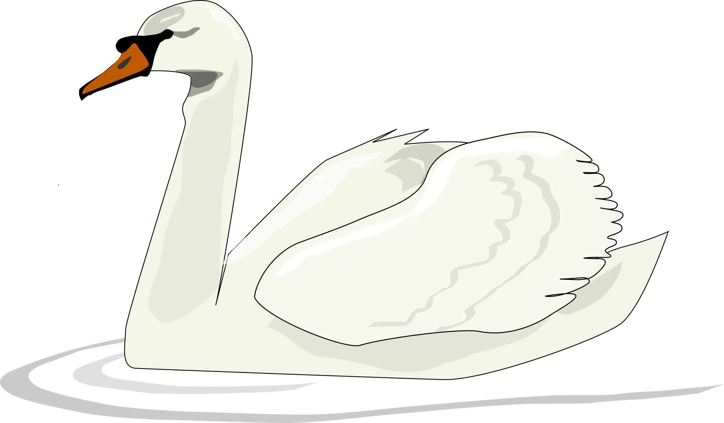 Swimming big image png. Couple clipart swan
