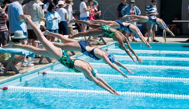 Free swim team cliparts. Clipart swimming swimming race