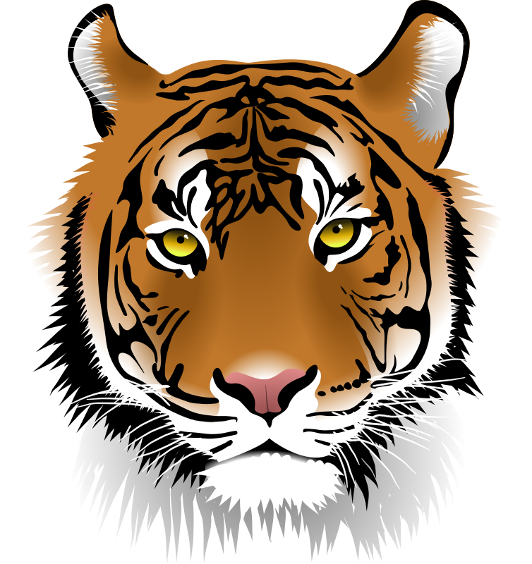 Siberian best image of. Clipart tiger aggressive