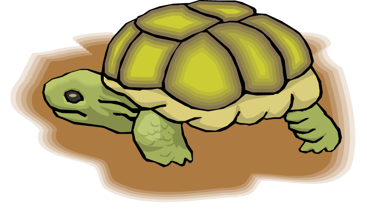 Tired clipart tortoise. Free turtle