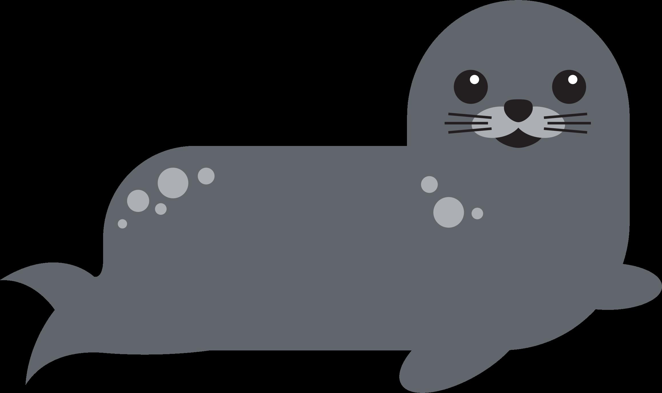 Walrus clipart swimming. Harbor seal big image