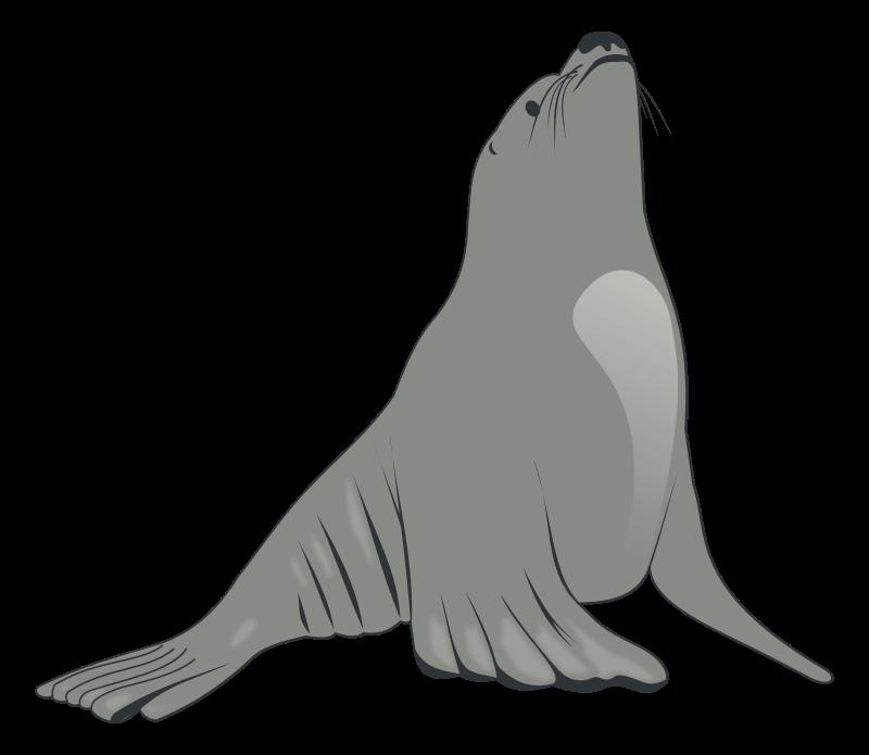Sea lion clip art. Walrus clipart christmas
