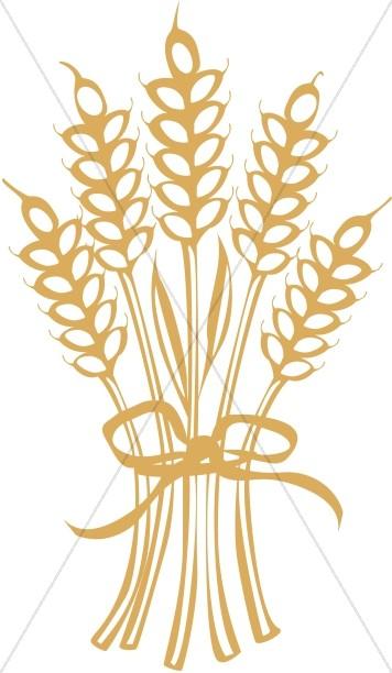 Ornamental bouquet . Wheat clipart thanksgiving
