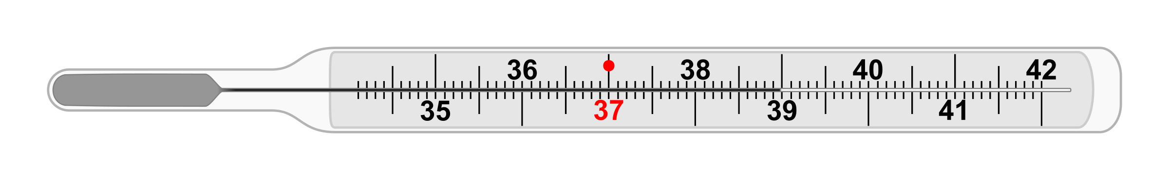 Thermometer clinical thermometer