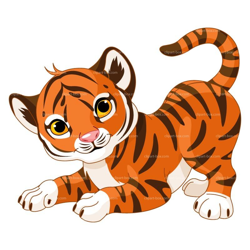 Tiger royalty grad day. Baby clipart tigers
