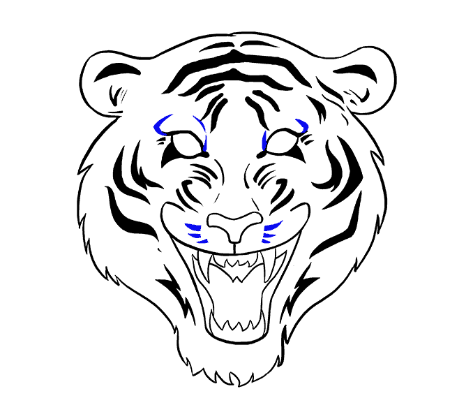 Face outline drawing at. Clipart tiger aggressive