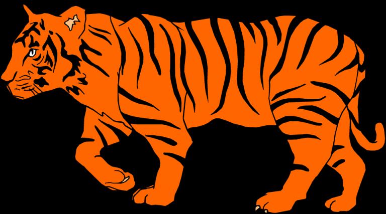 Clipart tiger bengal tiger. Clip art clipartix animations
