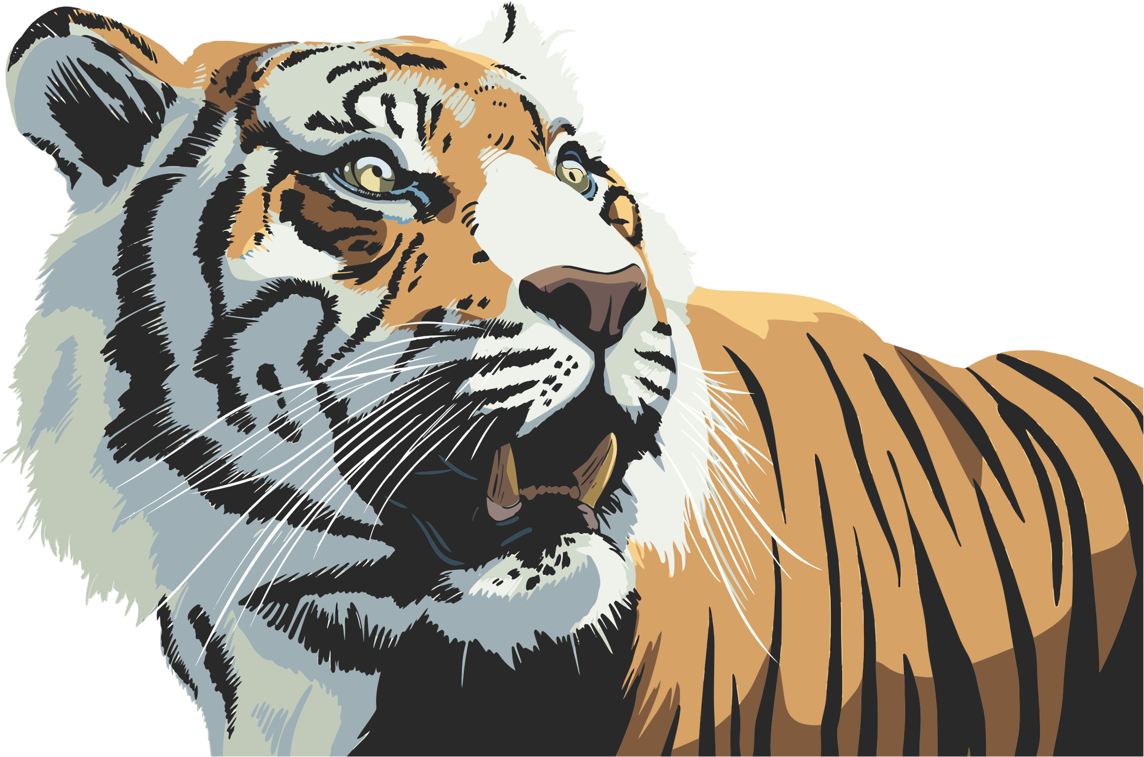 Clipart tiger bengal tiger. Email to pdf acur