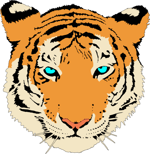 Clip art at clker. White clipart bengal tiger