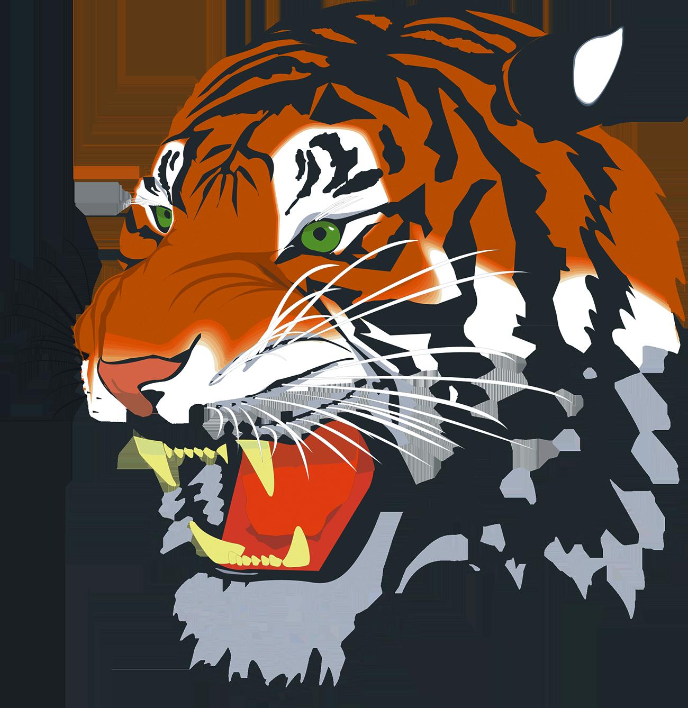 Clipart tiger bengal tiger. Siberian baby tigers clip