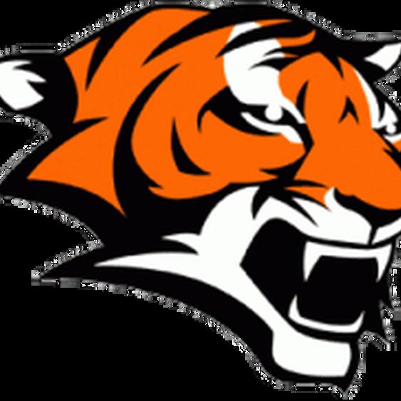 Clipart tiger cheerleading. Board marple jr tigers