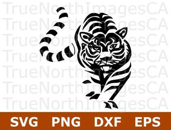 Clipart tiger file. Pin on cricket