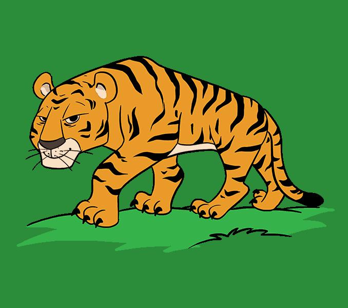 clipart tiger mammal