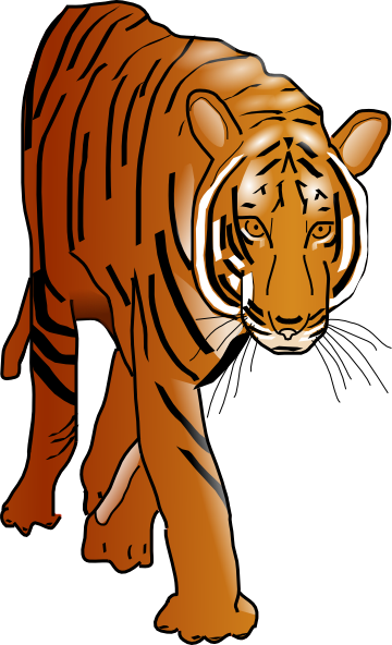 Color clip art at. Clipart tiger moving picture