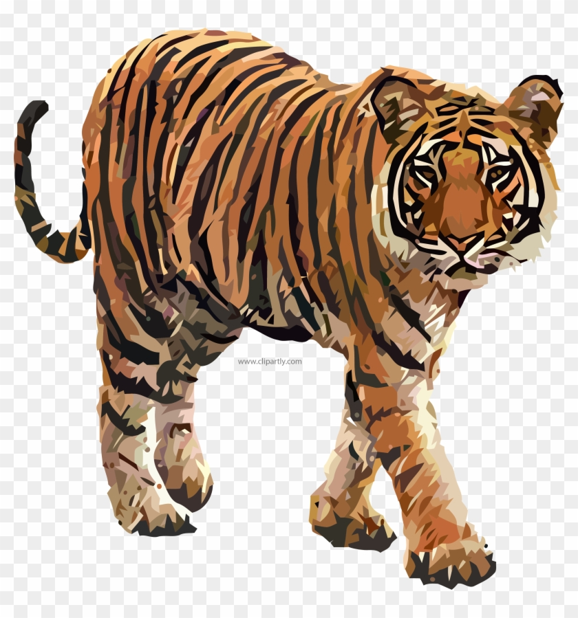 Clipart tiger real. Come png image www