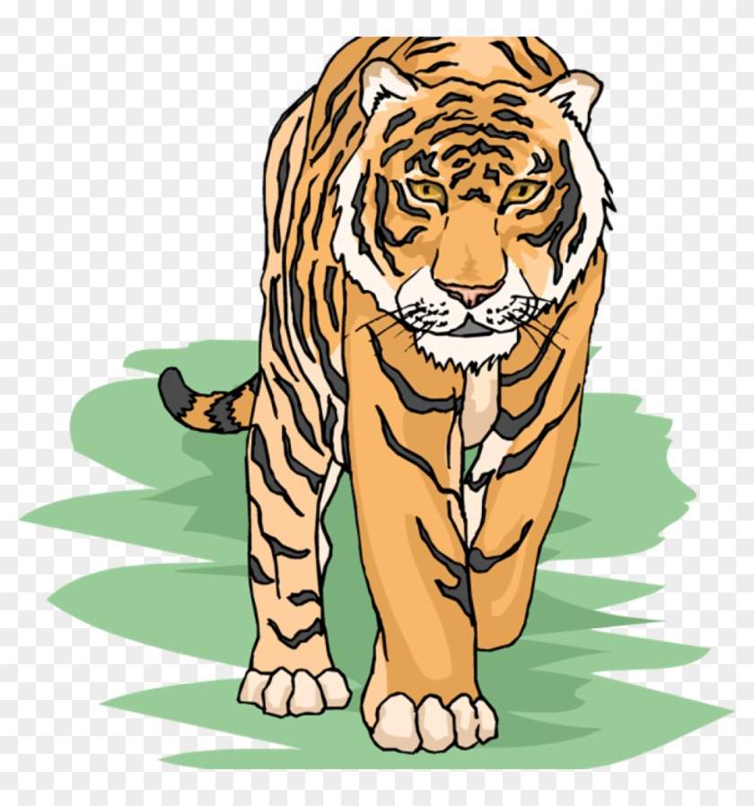Free for teachers hd. Clipart tiger teacher