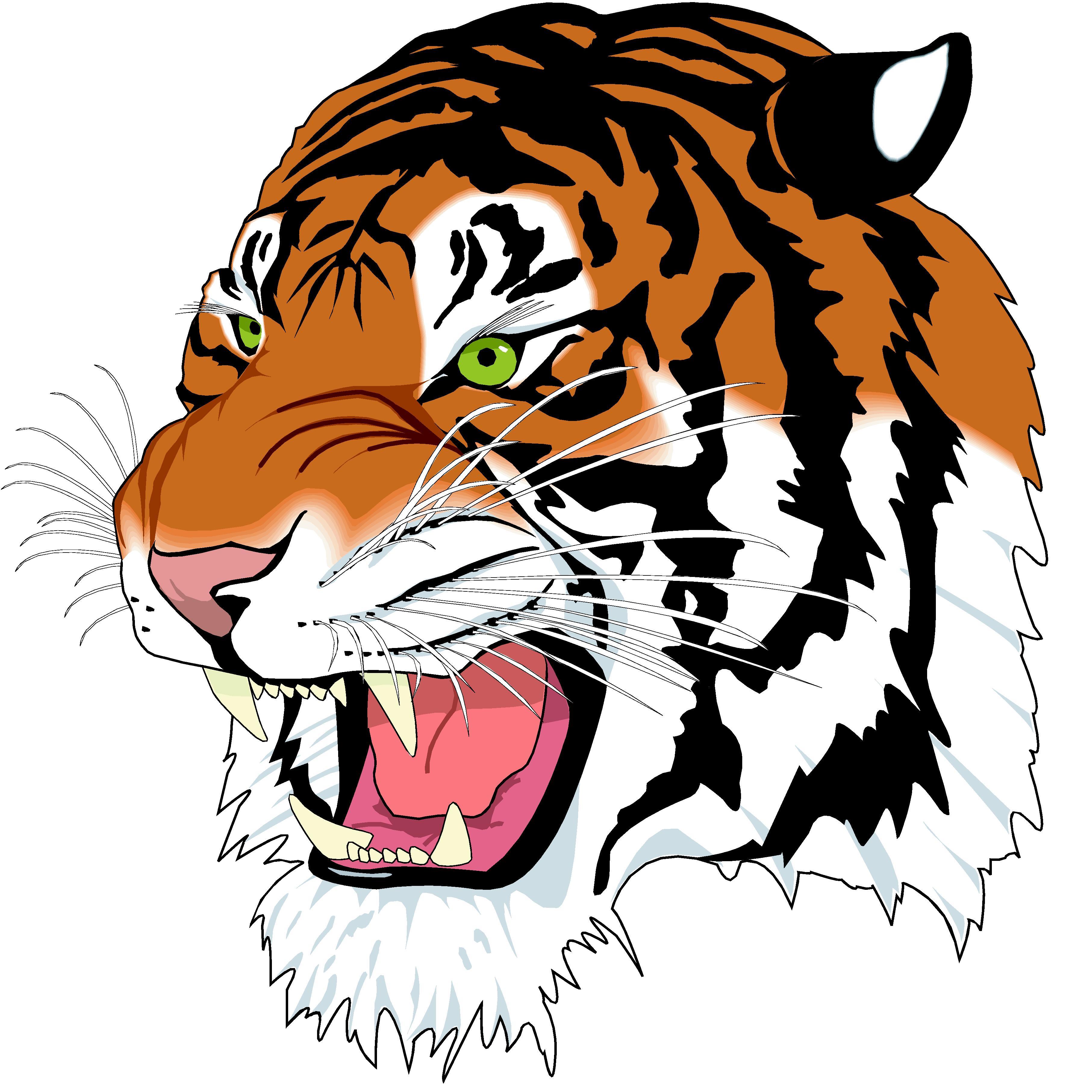 Free cliparts download clip. Clipart tiger tiger head