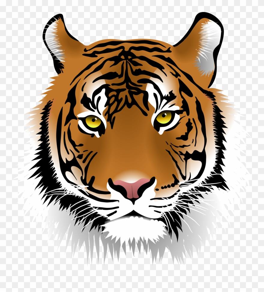 Free elegant face clip. Clipart tiger tiger head