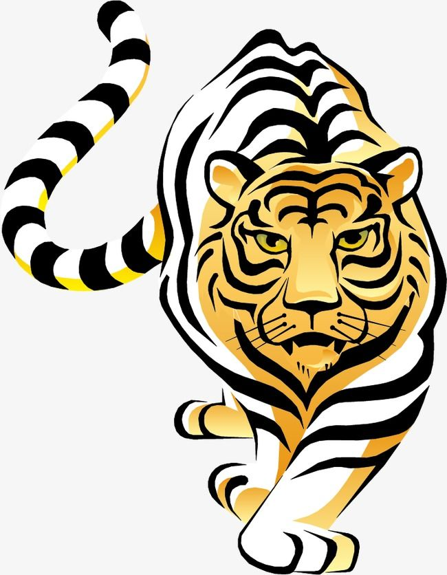Clipart tiger vector. Hand painted material
