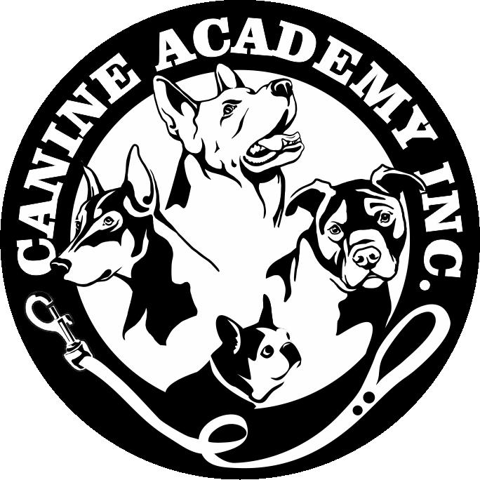 Canine academy . Clipart train daycare