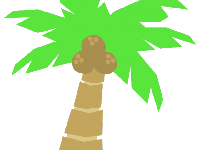 Coconut cliparts free download. Tree clipart buko