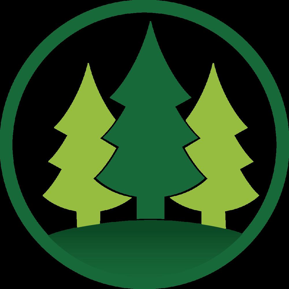 Quaker meadow christian . Clipart tree camp