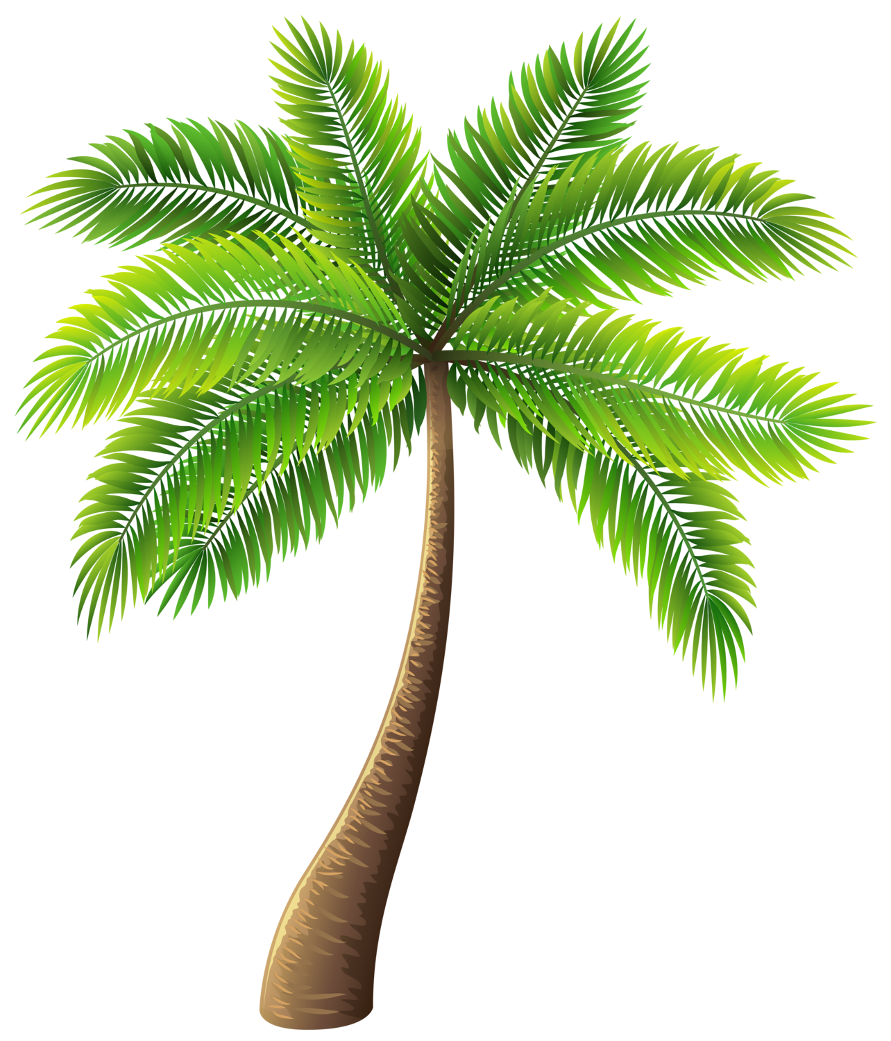 Palm tree png clip. Clipart trees high resolution