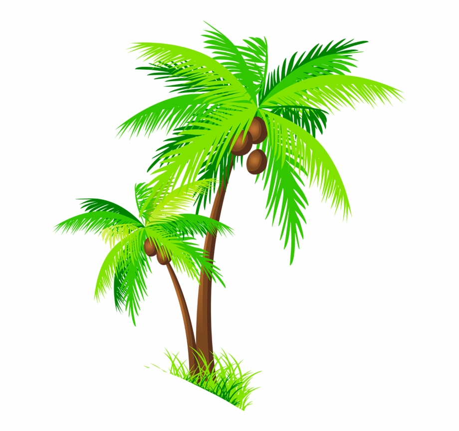 Clip art png free. Tree clipart coconut