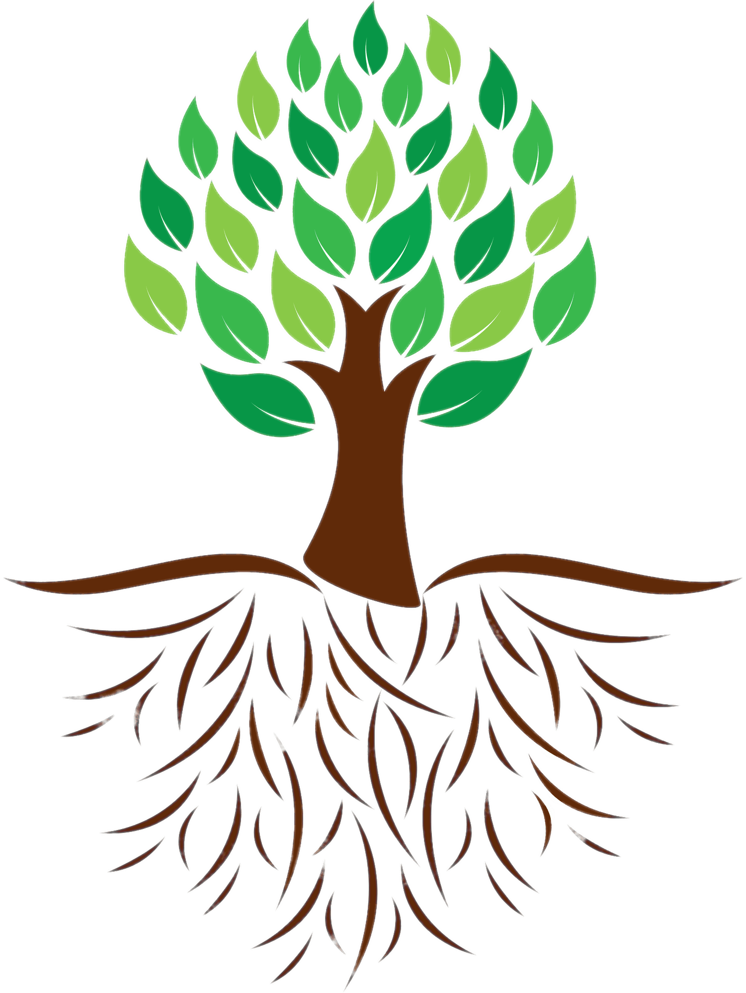 Tree clipart colour. And roots illustration transparent