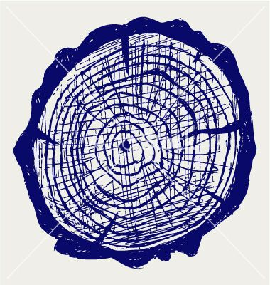 Of stump vector trees. Clipart tree cross section