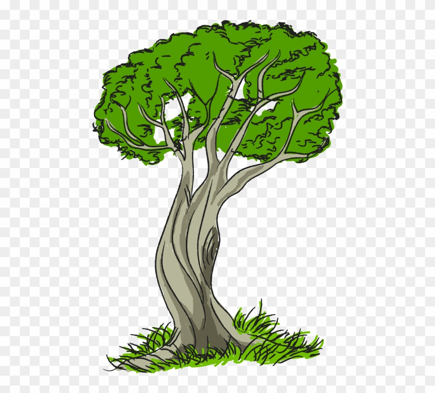 Trees with grass june. Nature clipart tree