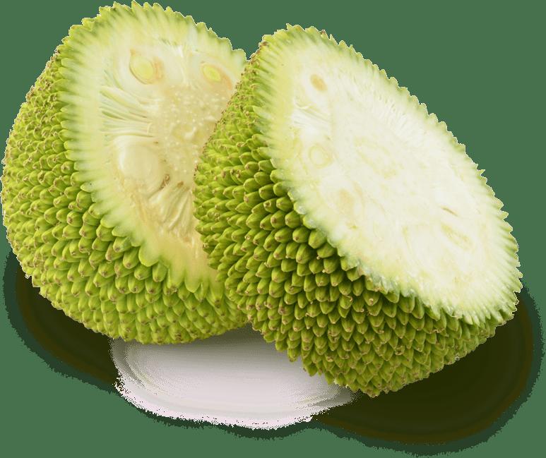 Slices of jackfruit transparent. Tree clipart jack fruit