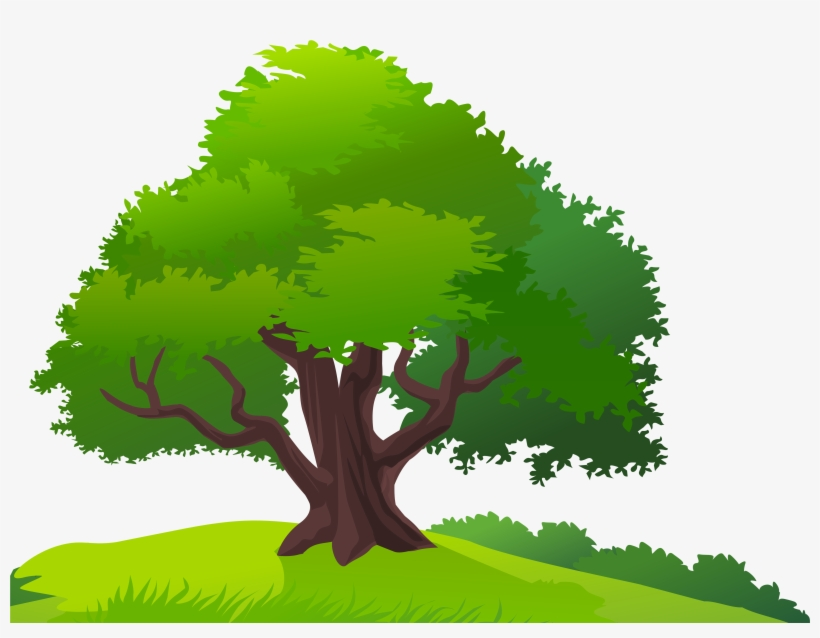 Landscape png trees and. Landscaping clipart tree