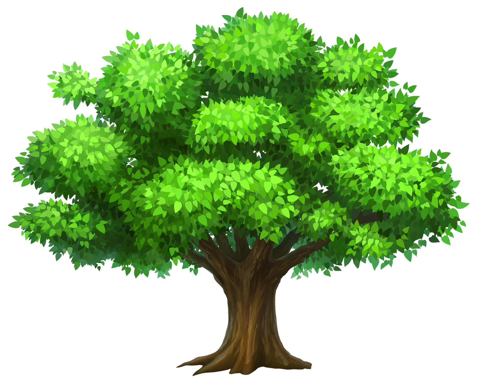 Cartoon png free download. Tree clipart molave