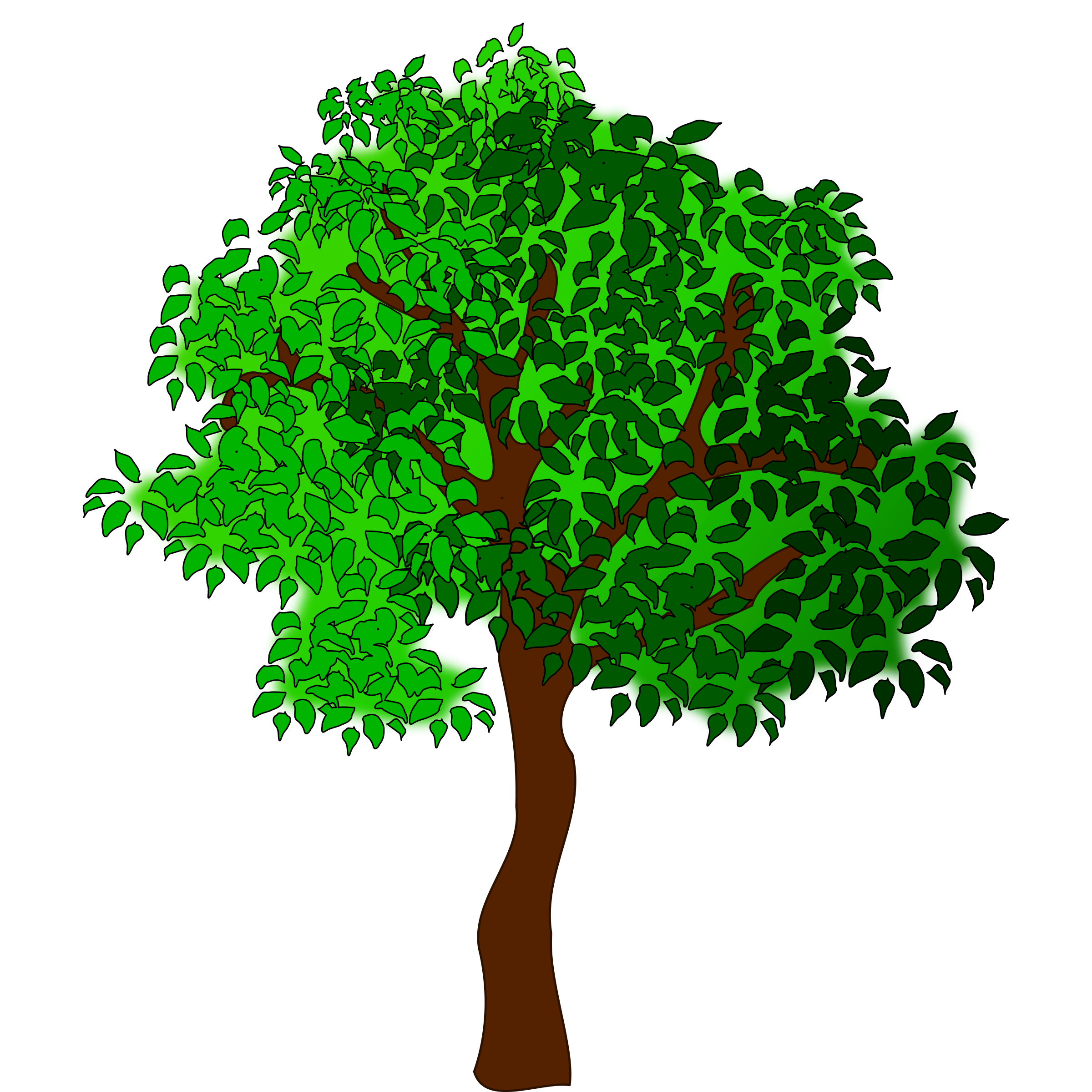 collection of sycamore. Tree clipart retro