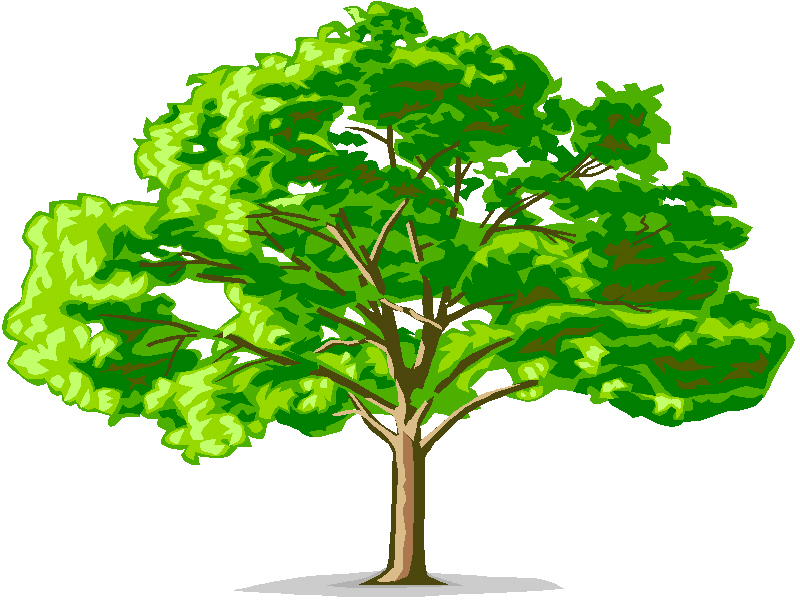 Station . Tree clipart narra