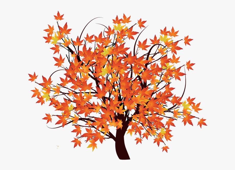 Pin maple clip art. Tree clipart october