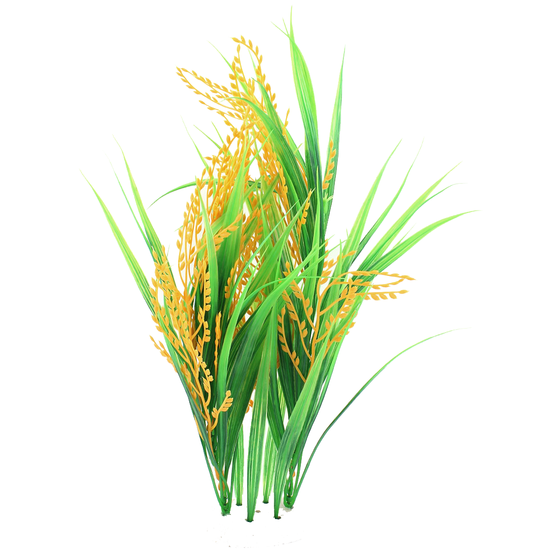 collection of crop. Rice clipart rice leaf
