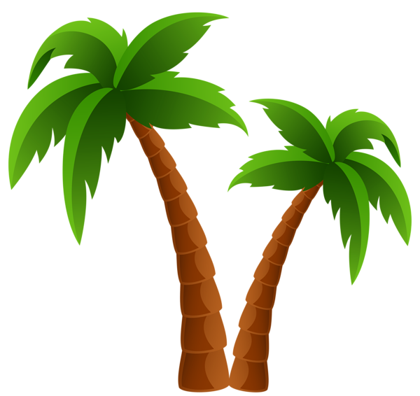 Of date tree tropics. Palm clipart transparent