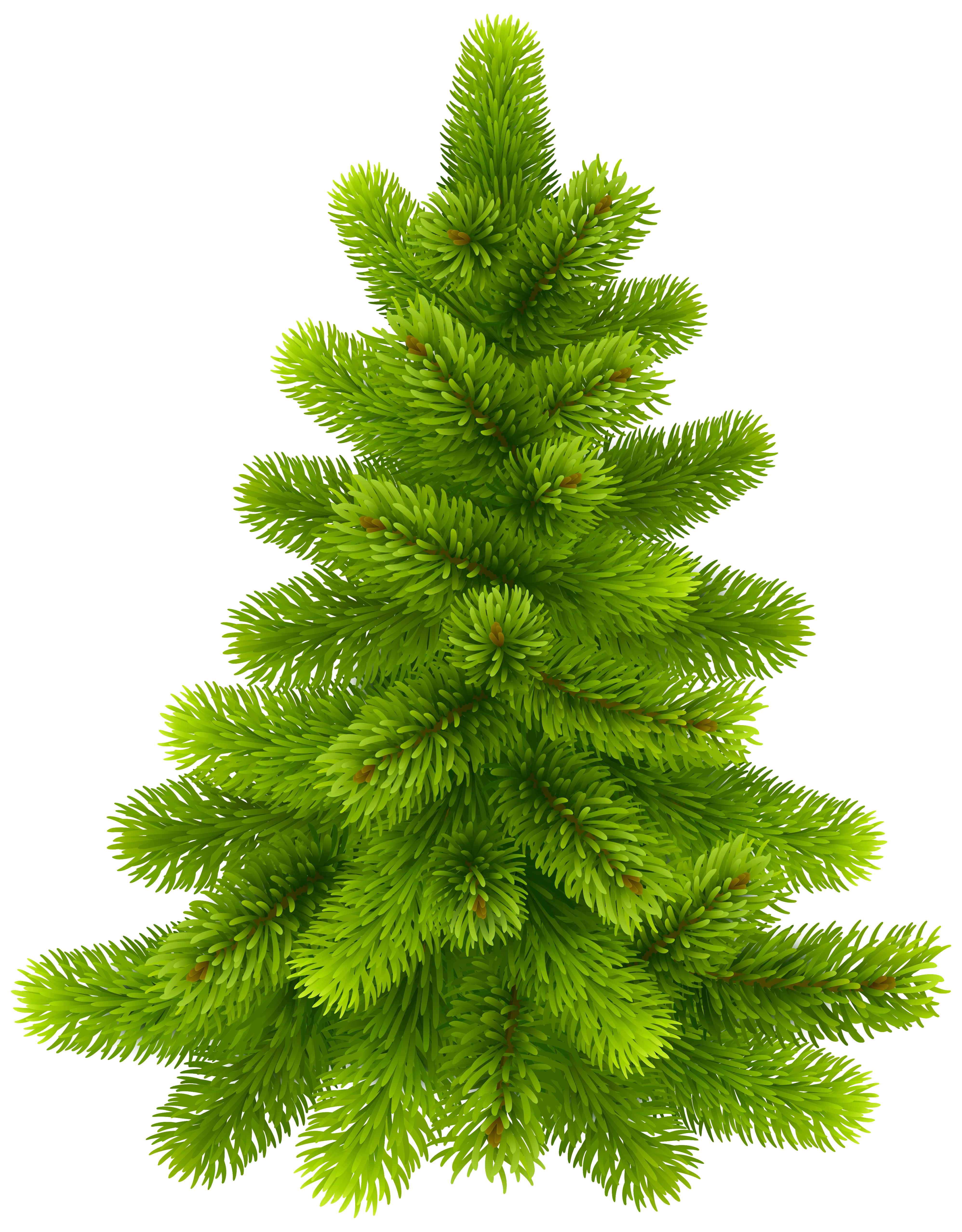 Tree png clip art. Clipart trees pine