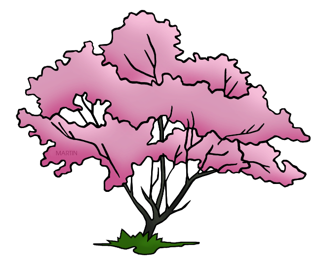 United states clip art. Clipart tree pink